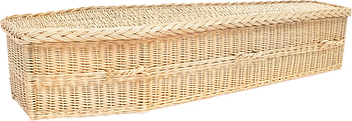 traditional-avalon-default-1200x413.png.