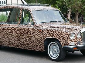leopard print hearse.jpg