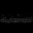 vegconomist_logo.png