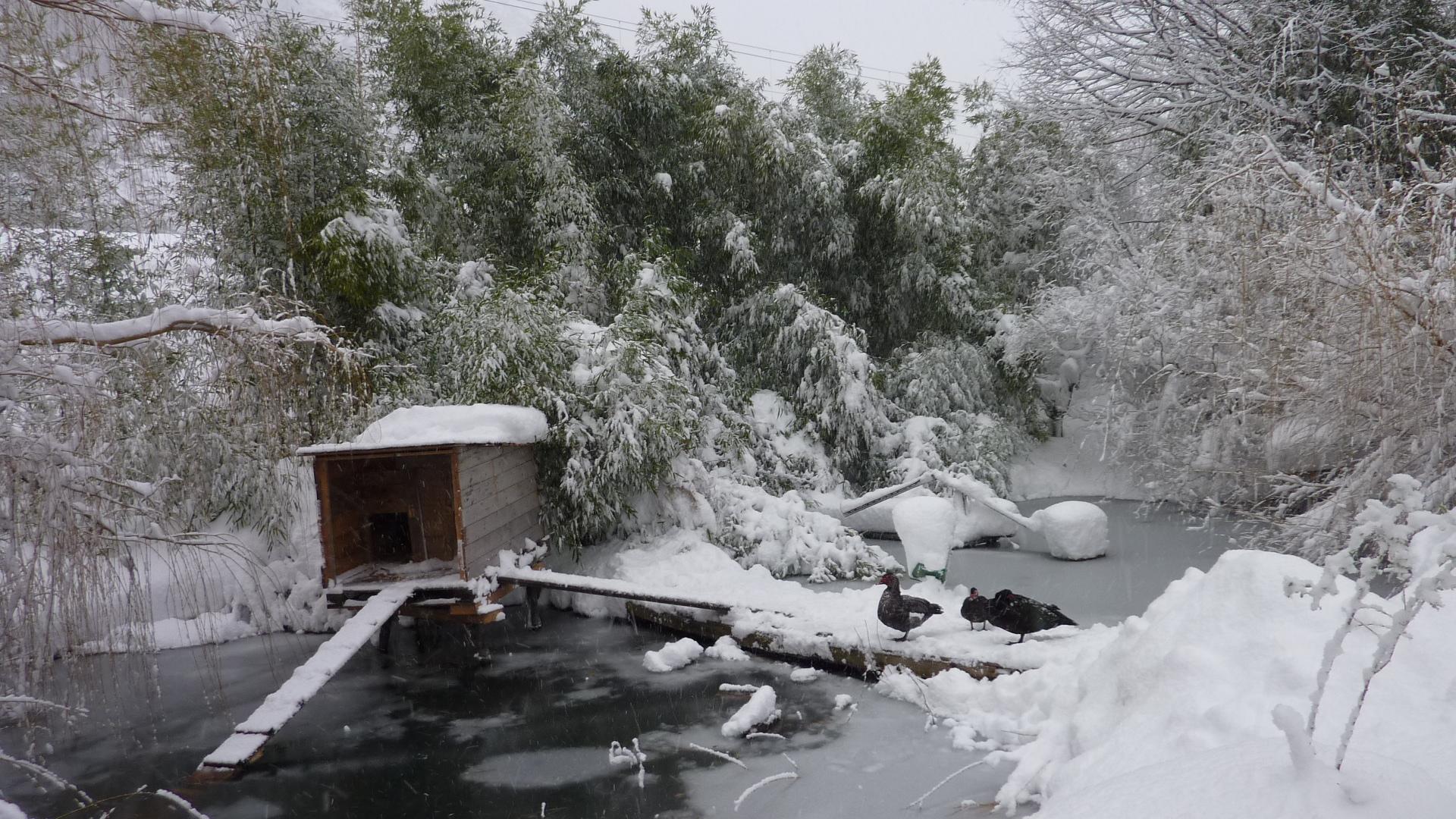 Vers-Gaïa sous la neige