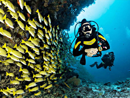 How to be an ally to female divers