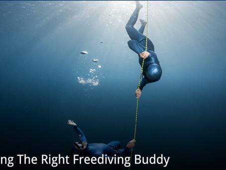Choosing The Right Freediving Buddy