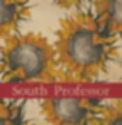 South Professor New Cover.png