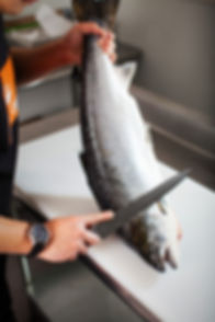 skuna bay salmon