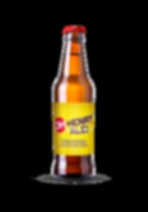 beer bottle oh.png
