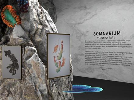 Guest Review for Somnarium