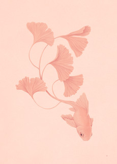 """Fantail, 2020 Gouache & Digital Exhibited at 10.5"""" x 14.5"""" Print at 5.25"""" x 7.25"""""""