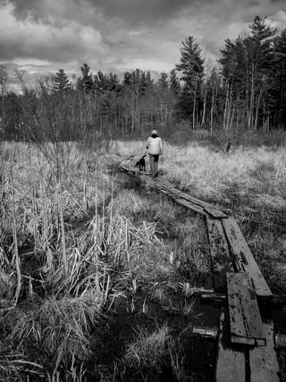 Cranberry Meadow Trail.jpg