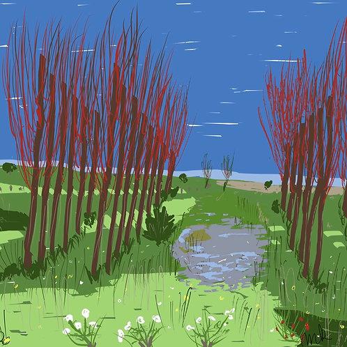 Fields in Pajottenland 1
