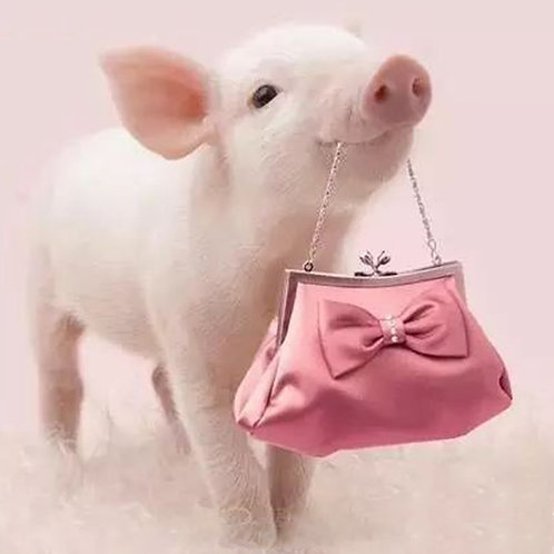 Pig And Purse
