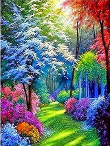 Colourful Pathway