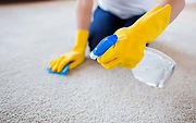 05-carpet-shampoo-Allergic-to-Cleaning-1