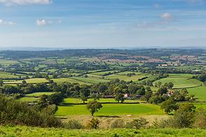 Blackdown Hills Landscape