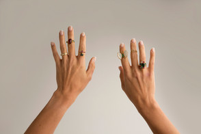 Modelos de anéis