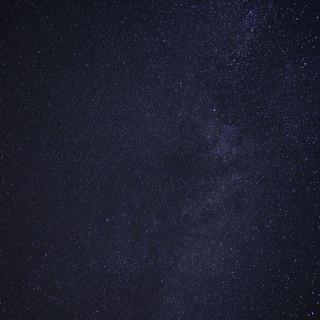 ALV06318.jpg