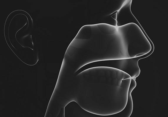 EAR, NOSE & THROAT