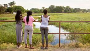 Bucket List Botswana: Top 3 Reasons You Should Go