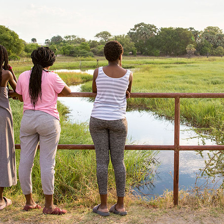 Bucket List Botswana: Top 3 Reasons You Should Go