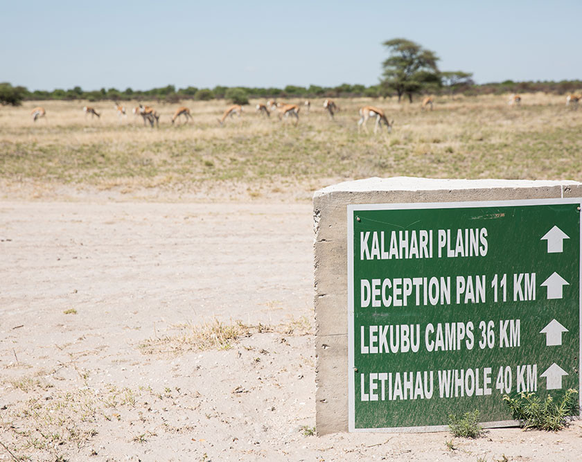 Kalahari Plains sign in Botswana with impala in the distance