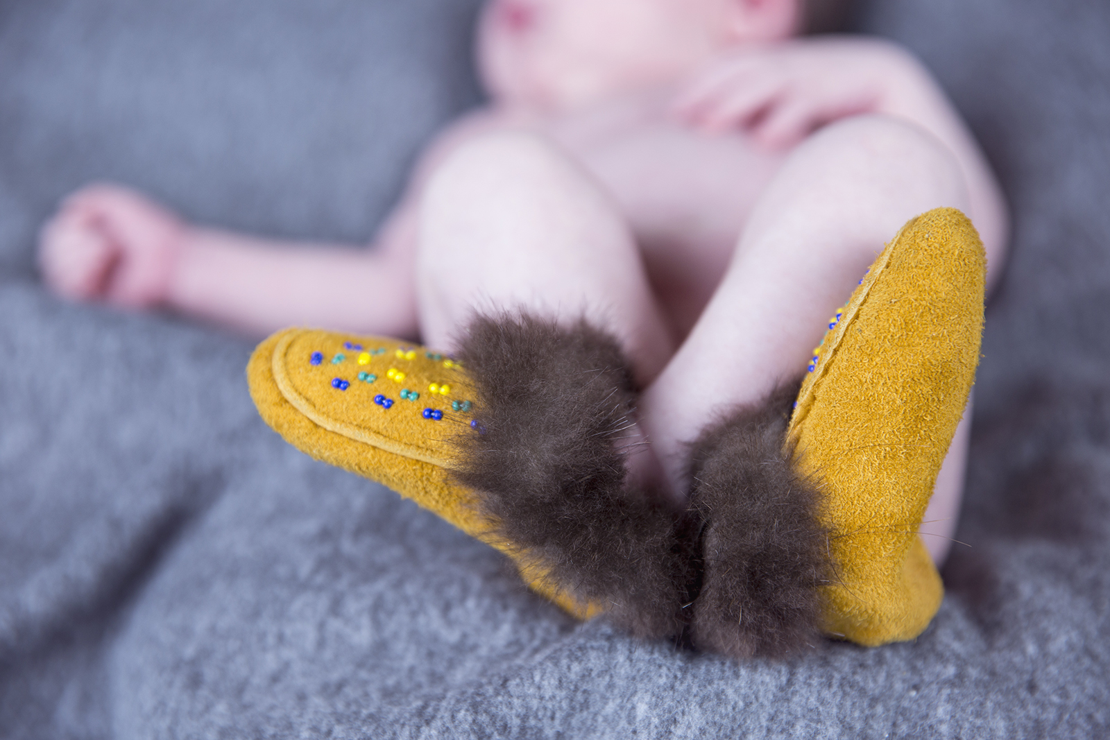 newborn photography whitehorse