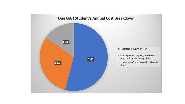 GiG_Student_Cost_piechart.jpg