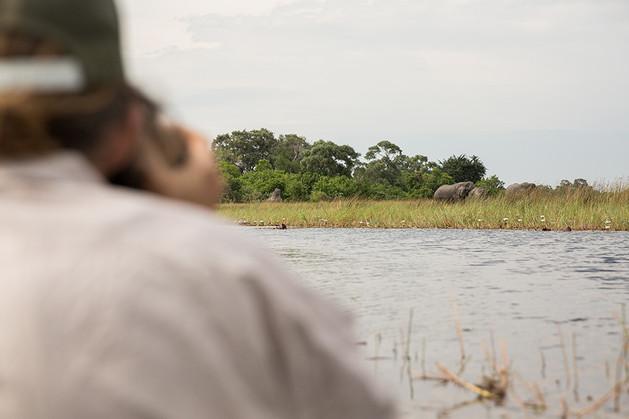 photographing elephant from mokoro in Okavango Delta in Botswana