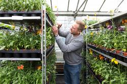 Hadlow College Plants