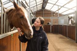 Hadlow College Equine