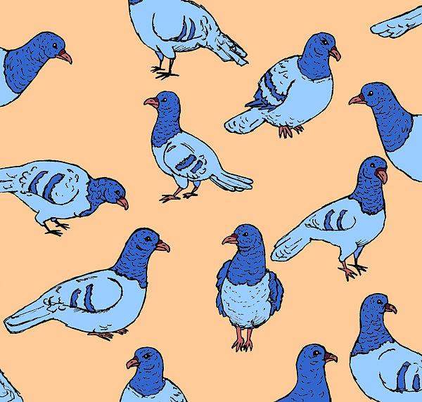 Blue Pigeons (2017).jpg