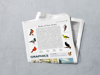 Graphics Section
