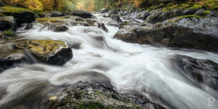 National Parks Web-5.jpg