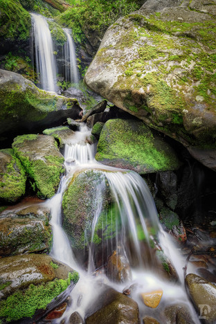 National Parks Web-6.jpg