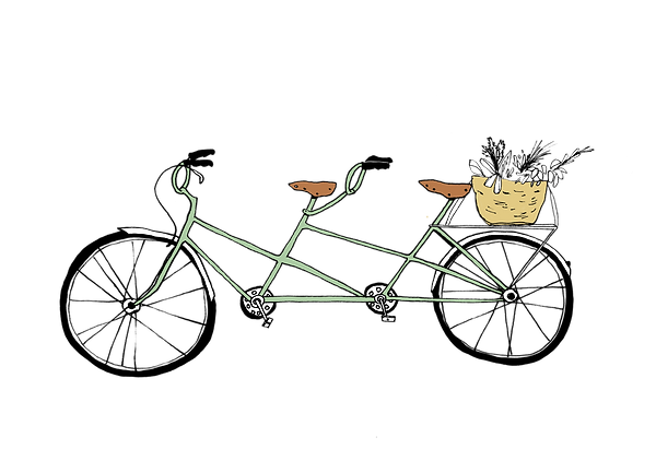 Tandem_Bike_illustration_basket (3).png