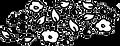 Vlier berries2.png