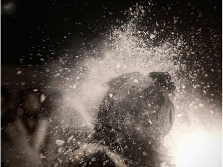 Camera as Witness (Part II): Million Mutinies - Ryan Lobo