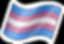 bandera trans video trans.png