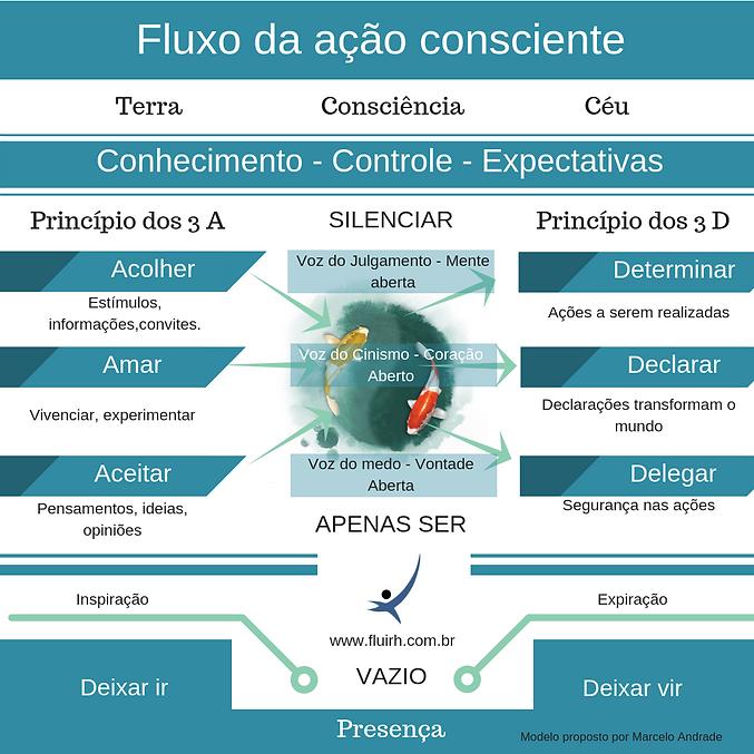 fluxo-da-acao-consciente.png