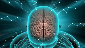 O cérebro é parte de você ou você é parte dele?