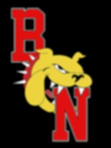 BDN Logo.png