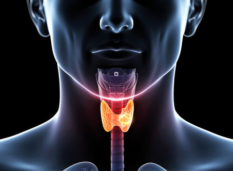 A Functional Approach to Thyroid Health