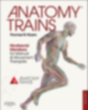 anatomy trains, book, fascia, fascial lines
