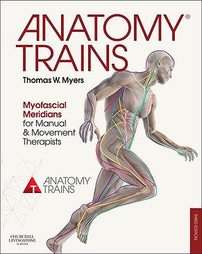 anatomy trains, book, fascia, fascial lines