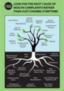 functional medicine root cause chart
