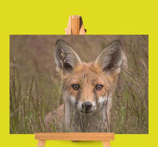 Canvas_Print_Photo.jpg