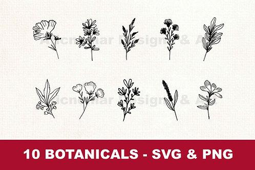 Digital Download | Botanical svg png bundle | flowers svg png