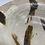 Thumbnail: shino service bowl
