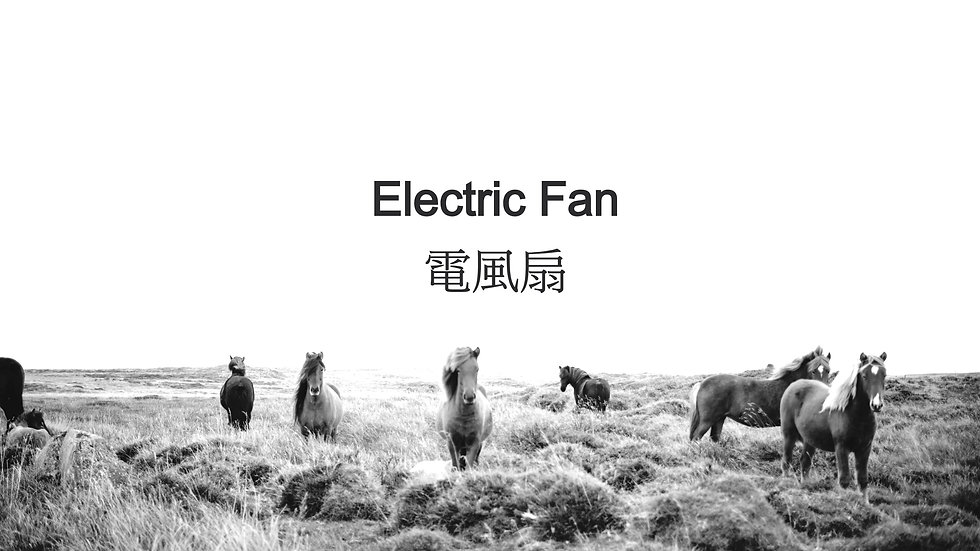 Electric Fan 電風扇