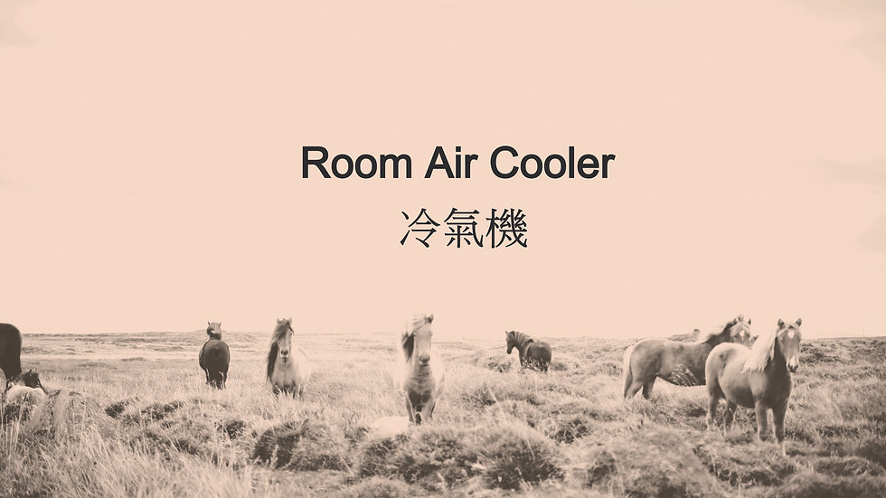 Room Air Cooler 冷氣機