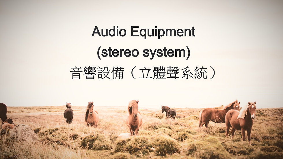 Audio Equipment (stereo system) 音響設備(立體聲系統)