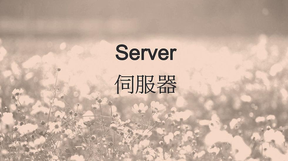 Server 伺服器